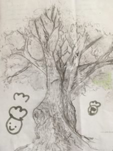The drawing of the tree